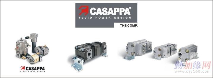 casappa液压泵,液压马达图片