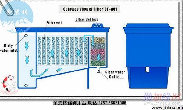孵化草: 普濾仕過濾刷: 韓國進口氣條氣棒: 金碧林普濾仕錦鯉網: 普圖片