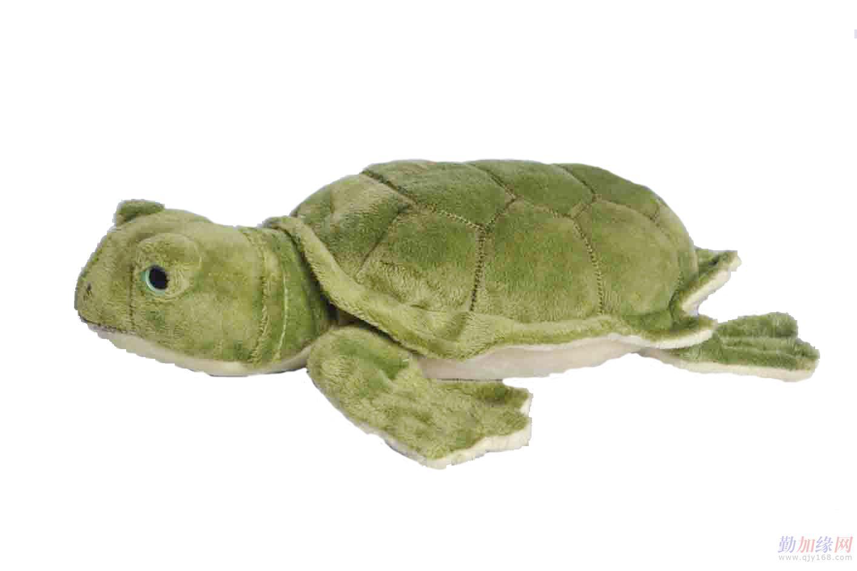 抱枕系列-乌龟毛绒玩具-乌龟玩具批发-动漫造型图片