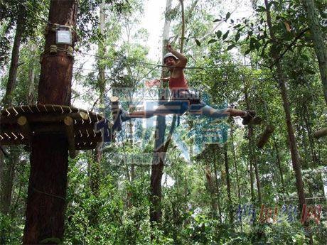 森林探险项目简介意义及建设公司报价