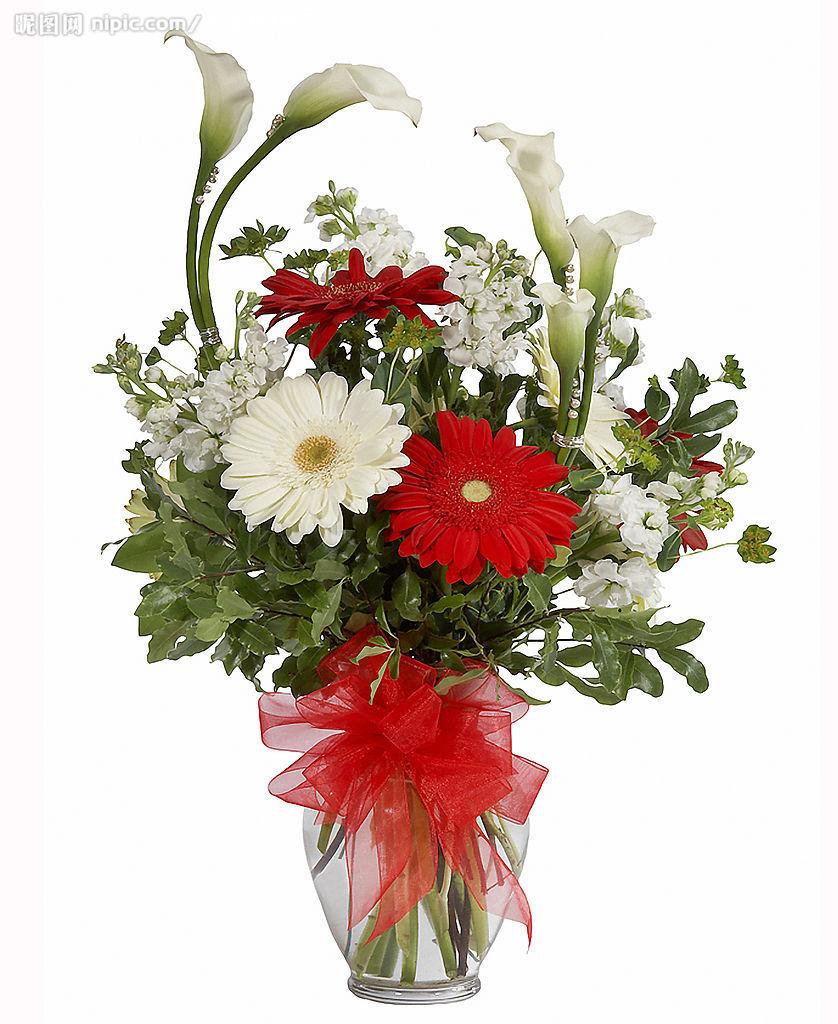 玻璃瓶康乃馨插花图片