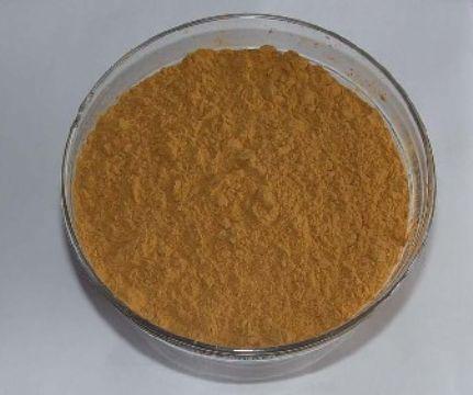 皂角苷-4皂角苷 皂角图片