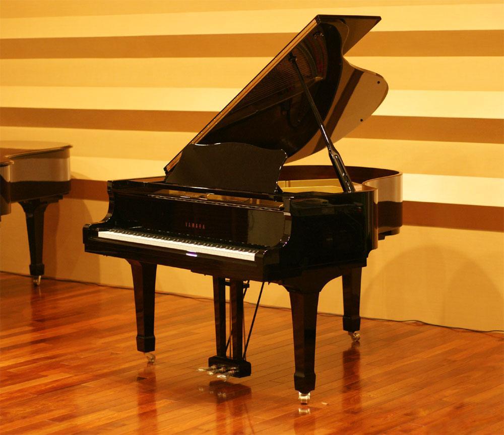 学钢琴要领歌决图片