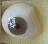 装假眼之后的图片_卓美义眼中心内有义眼的图片,义眼材质的介绍,义眼的安装方法以及义眼