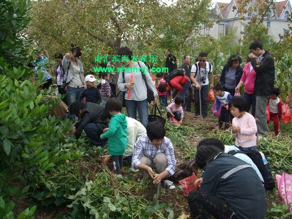 上海周边农家乐旅游 乡村采摘一日游