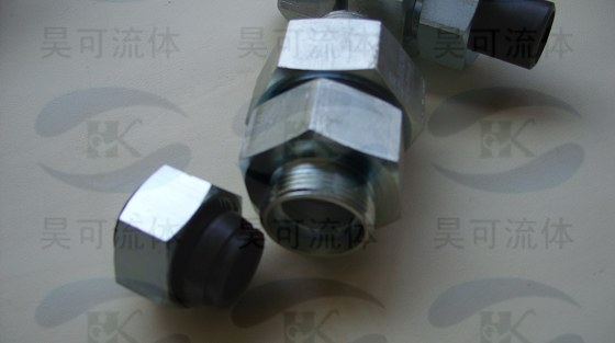 rz端直通单向阀,rz-l10g1/4wd上海昊可单向阀图片