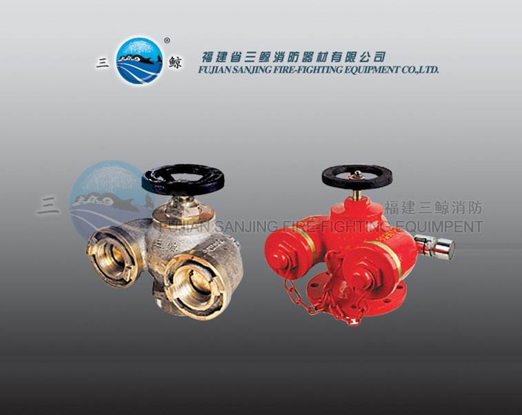 sqd100新型多用式地上水泵接合器