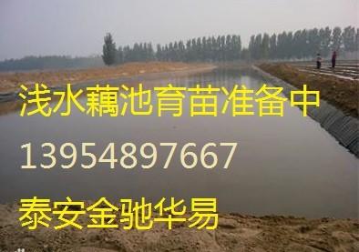 垃圾填埋场土工膜,复合土工膜,防渗膜焊接 土工膜焊条
