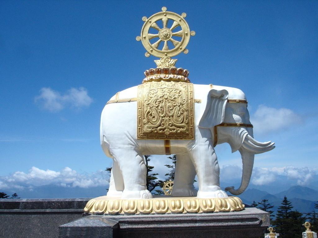 纯大象精品绘制图案象汉白玉天正,手工石雕石象弧长的线石雕怎么雕刻图片