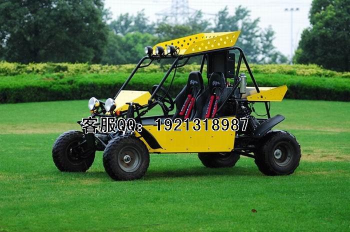 杰纳山猫250cc卡丁车图片
