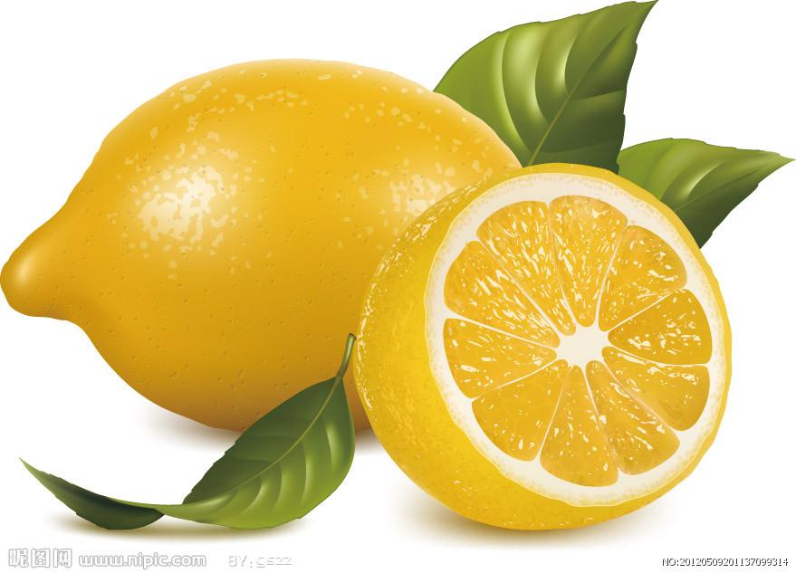 柠檬花手绘图片