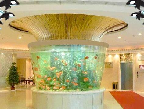 圆柱形鱼缸在很多场所都有应用和摆放,比如在家庭,办公室,商场和娱乐