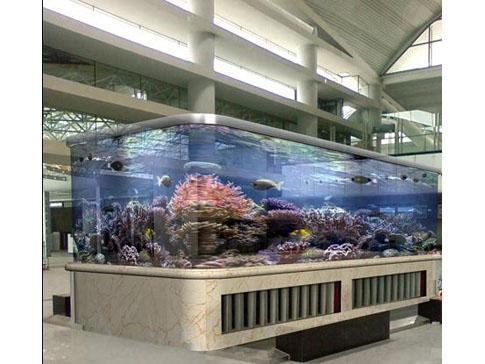 車載大型魚缸 小魚缸用什么過濾器好圖片