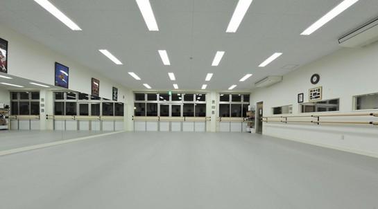 首页 建筑建材分类 地板 塑胶地板 > 北京长盈耐划痕舞蹈室地板胶供应