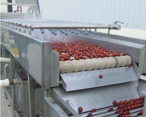 水果蔬菜气泡清洗流水线