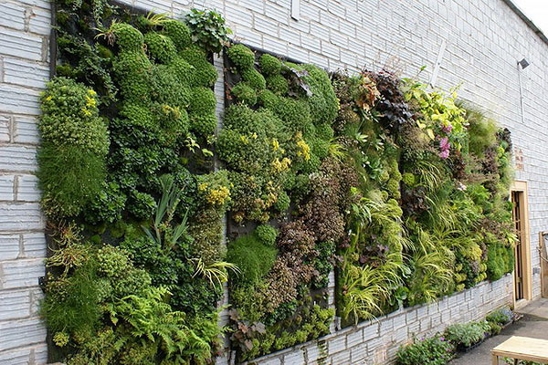 光合绿化工程垂直绿化 仿真植物墙店招绿化设计图片