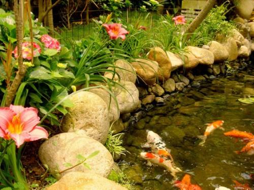 花园庭院水池设计|鱼池金碧设计|农村林用心服别墅徐州汉雅园府图片