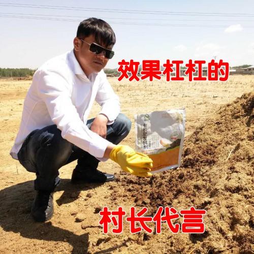 微生物树叶酒糟秸秆有机肥物料快速腐熟剂堆肥粪便发酵剂菌种菌粉