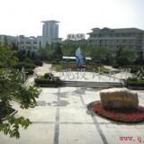 西安小区绿化