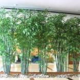 西安仿真植物