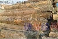 广州木方进口清关