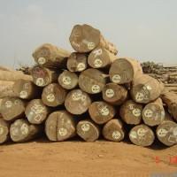上海木板材进口清关公司进口关税海关编码