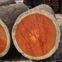 上海木板材进口清关代理详细流程文件