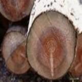 越南酸枝花梨包税进口代理