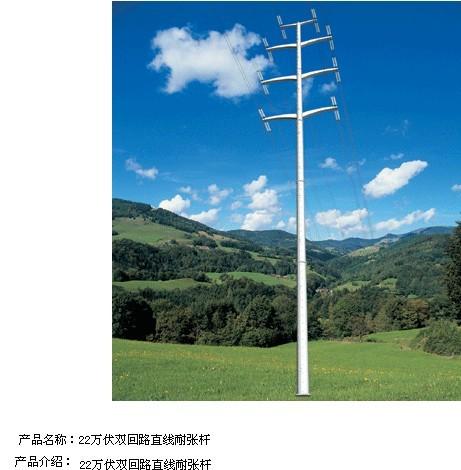 供忻州交通信号杆标志杆监控杆路灯杆电力杆