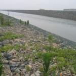 石笼防汛铅丝网