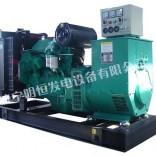 玉柴系列纯铜线省油柴油发电机组发电机厂家直销