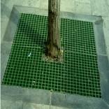 七台河树箅子