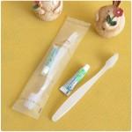 宾馆高档客房用品软毛牙刷牙膏套装 星级酒店一次性牙具
