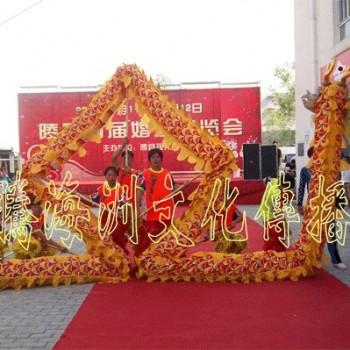 北京/北京舞狮舞龙庆典表演北京舞龙舞狮演出公司