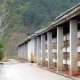 山东地板砖兔笼制作厂