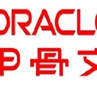 oracle9i����������ҵ��
