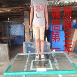 户外篮球架 室外移动式标准成人篮球架 加强加厚型 配钢化篮板