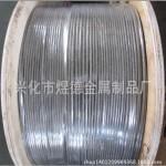 316L无磁钢丝绳