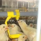 方圆笼具为养殖业带来福利