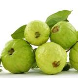 【珍珠番石榴】广西玉林新鲜水果15斤台湾珍珠番石榴芭乐低糖高纤维热带水果