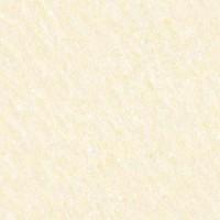 �㶫��ɽ��ש ������ש �������� NP060011H(�װ�)