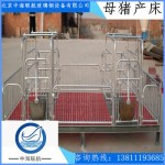 葫芦岛母猪分娩床 猪双体产床 精品加厚