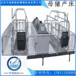 辽阳各种母猪产床,厂家直供,定做加工