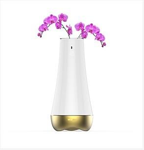 智能花瓶,智能家居网关,无线智能家居核心