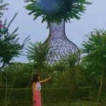 好看的紫薇花瓶供应基地,编制造型植物种植公司