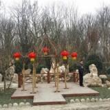 紫薇现场编制 景区规划建设工程 景观园林设计 工程建筑苗木