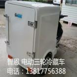 三轮冷藏车 移动冷箱 直流小冰箱
