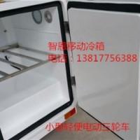 电动三轮冷藏车 移动冷箱 直流冰箱 依维柯改装冷藏车