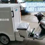 电动三轮冷藏车 移动冷箱 直流冰箱