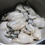 梅州生蚝的做法_生蚝的功效与作用及食用方法